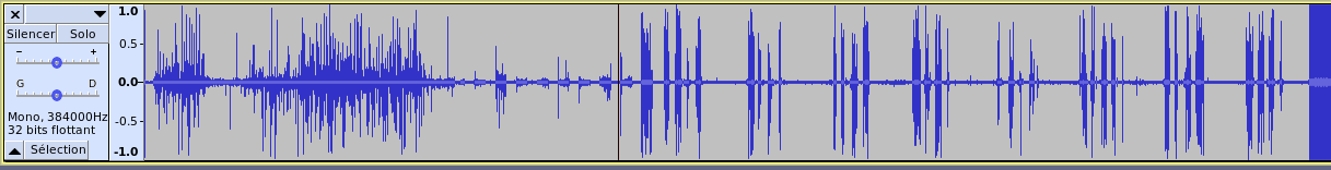 Signal 9 - Channel 1 on Audacity
